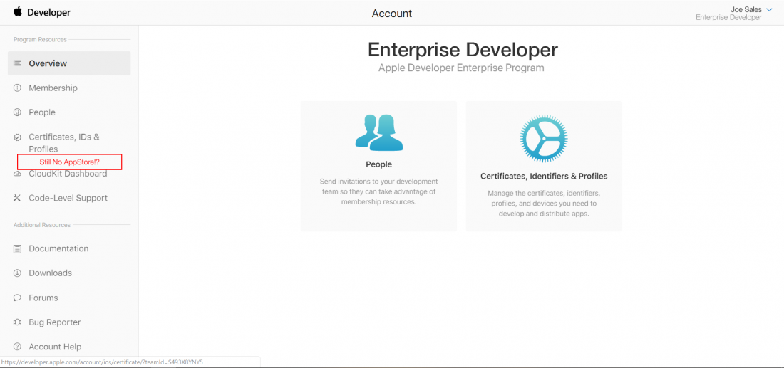 Enterprise_developer_no_app_store